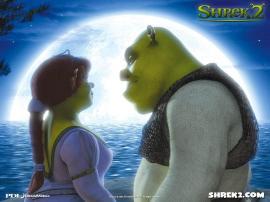 Princess-Fiona-and-her-husband-Shrek-princess-fiona-1460273-1024-768