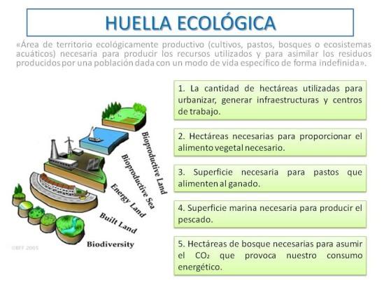 Huella ecológica/Fuente: F. Hernández