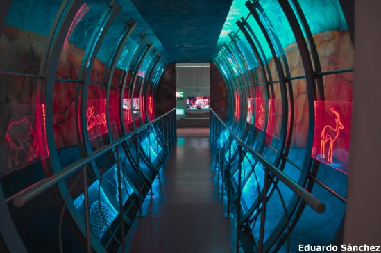 Universum; Foto: Eduardo Sánchez